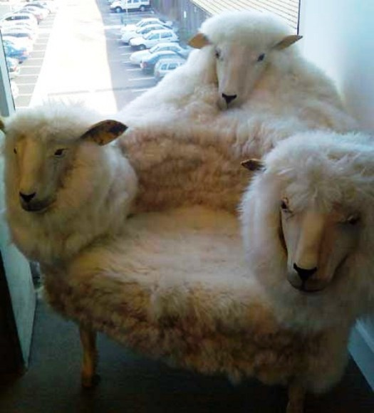 кресло из шкуры