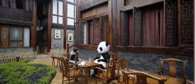Панда отель в Китае