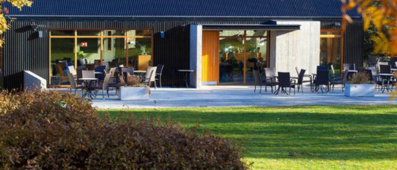 Релакс-кафе в ботаническом саду