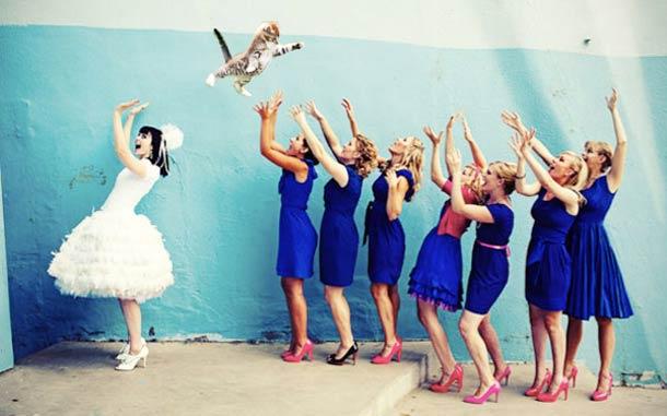 Кошка вместо букета для невесты