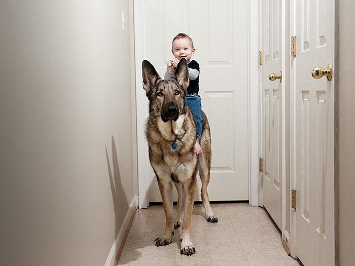 22 потрясающие фотографии дружбы больших собак и детей 12