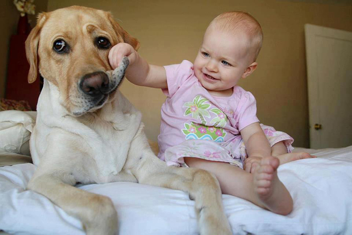 22 потрясающие фотографии дружбы больших собак и детей 19