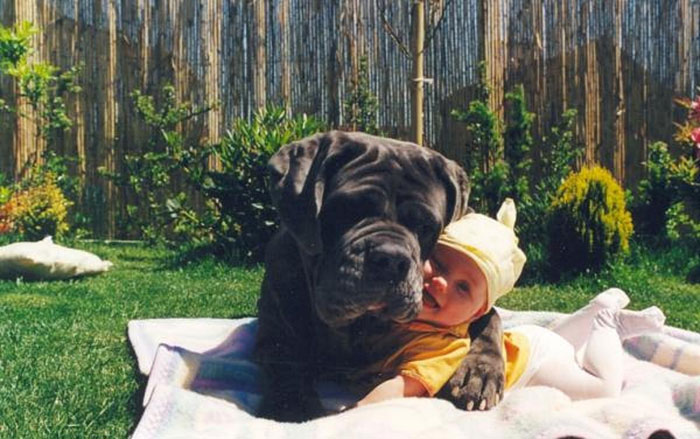 22 потрясающие фотографии дружбы больших собак и детей 3