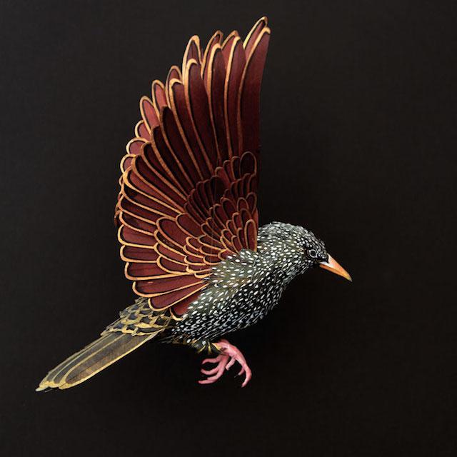 Бумажные скульптуры птиц Diana Beltran Herrera 10