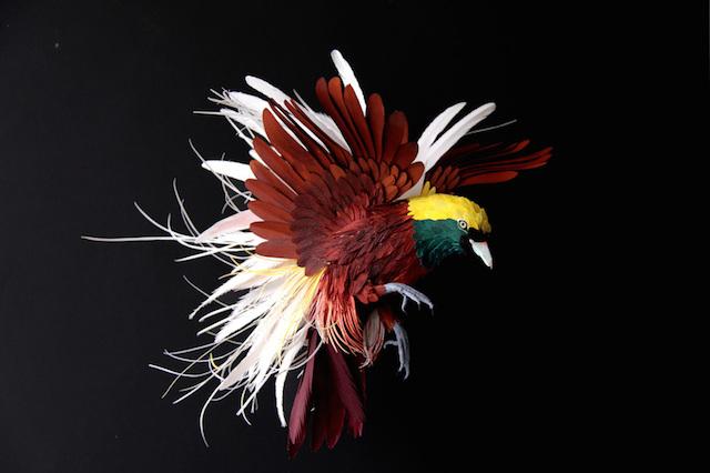 Бумажные скульптуры птиц Diana Beltran Herrera 4