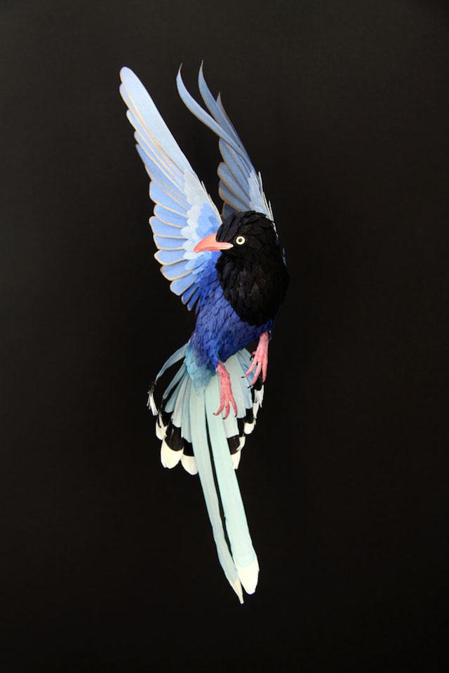 Бумажные скульптуры птиц Diana Beltran Herrera 6