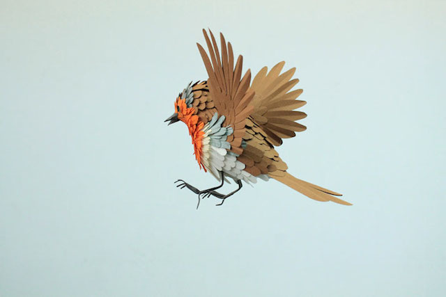 Бумажные скульптуры птиц Diana Beltran Herrera 8