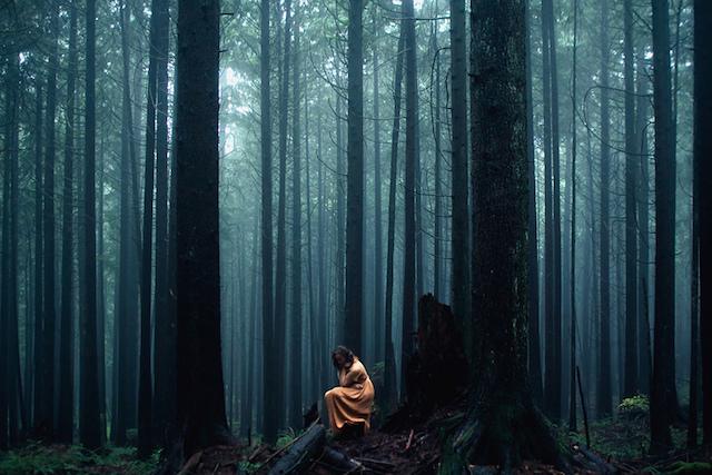 Великолепные пейзажи на снимках Элизабет Гэдд 10