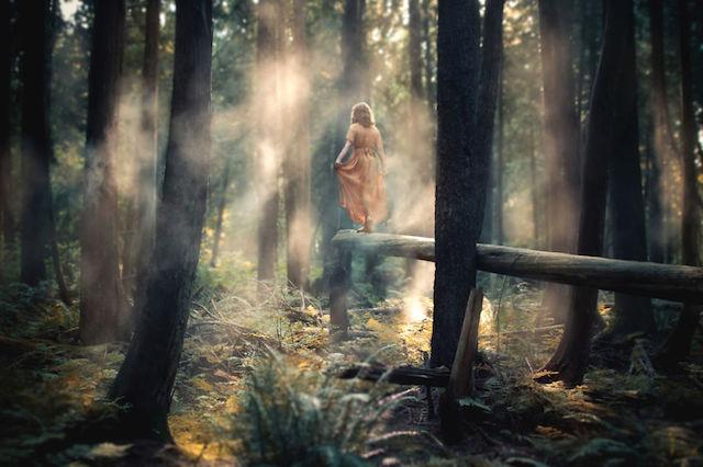 Великолепные пейзажи на снимках Элизабет Гэдд 3