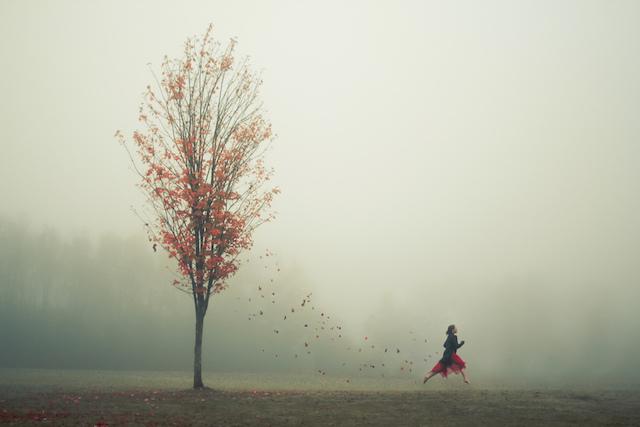 Великолепные пейзажи на снимках Элизабет Гэдд 8