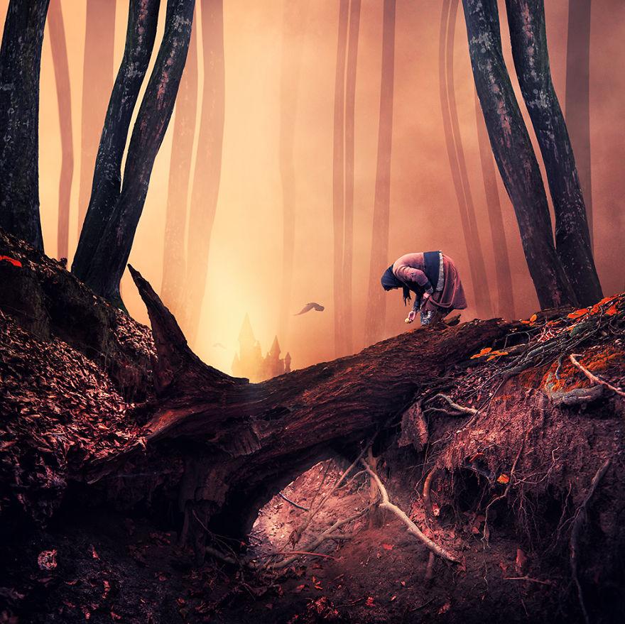 Выдумки про темные леса
