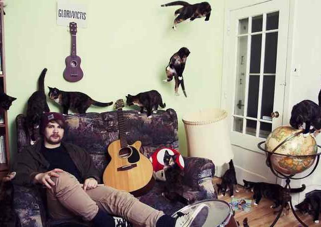 Сумасшедшие любители кошек 2