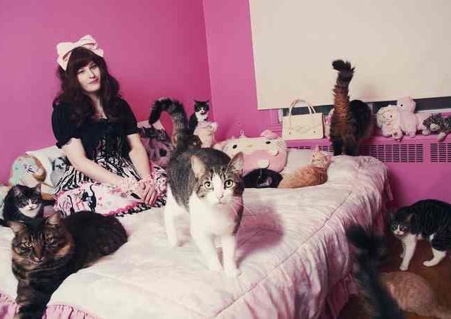 Сумасшедшие любители кошек 9