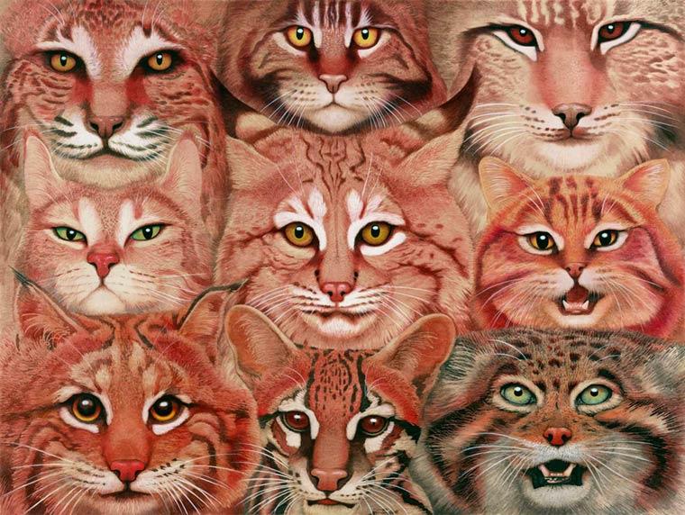 Сюрреалистические картины Tiffany Bozic 7