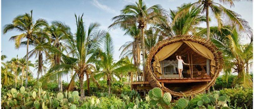 Цилиндрический бамбуковый домик и солнечный оазис в Мексике