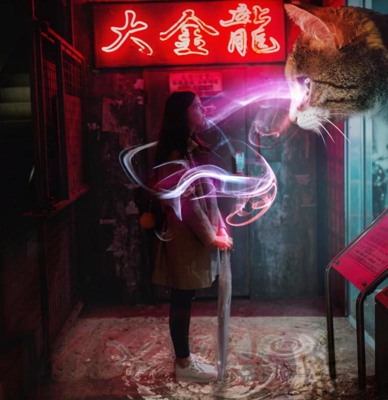 Фотоманипуляции Девочка и кот