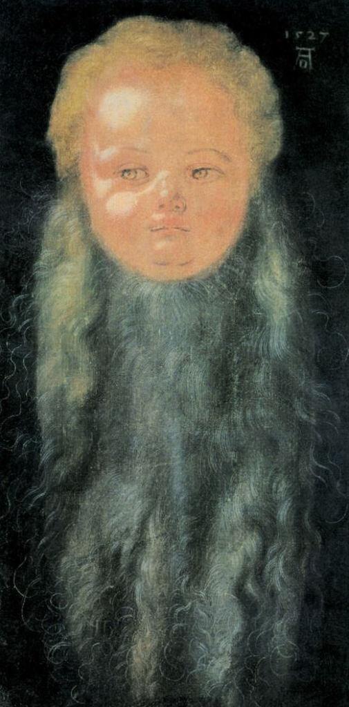 Портрет мальчика с длинной бородой - Альбрехт Дюре (1527)