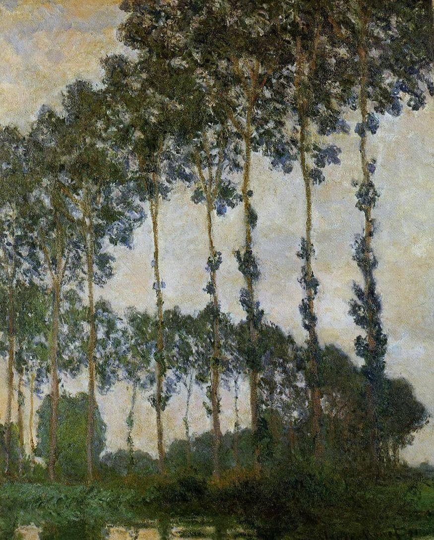 Тополя в Живерни - Клод Моне (1891)