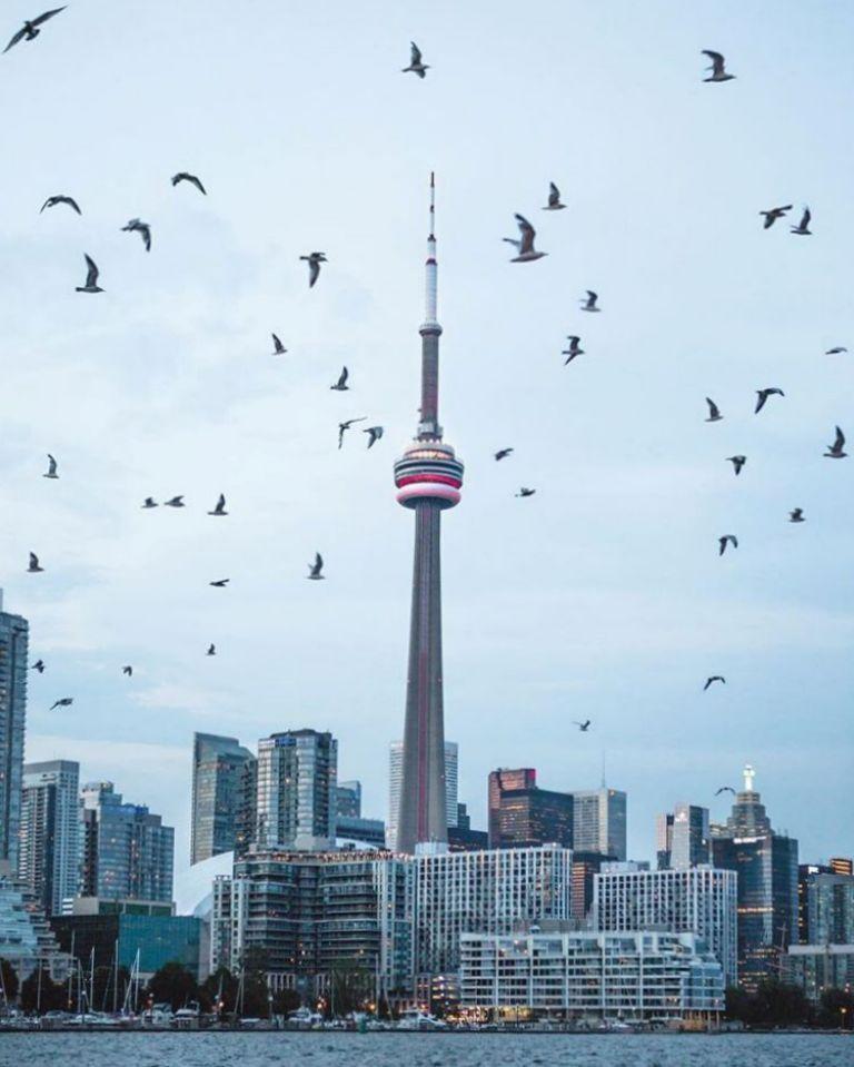 Вдохновляющие фотографии - Виктор Ченг (Торонто)
