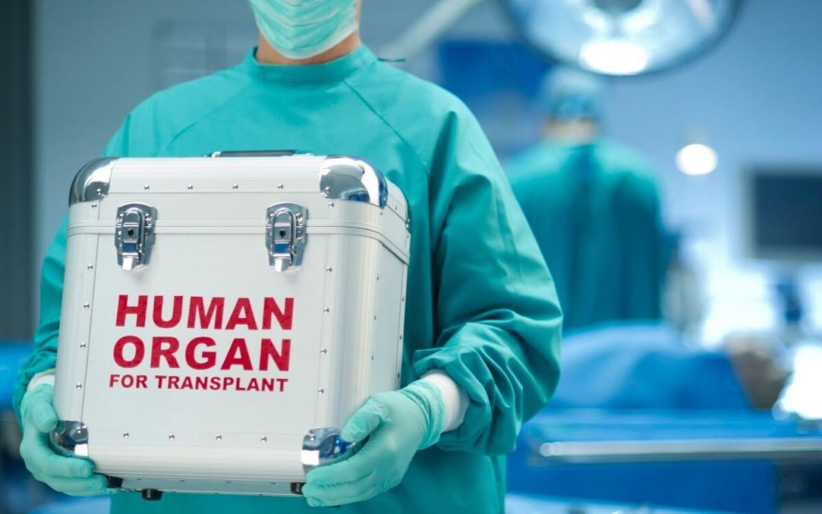 Взрослое мужество или немного о трансплантации органов 2