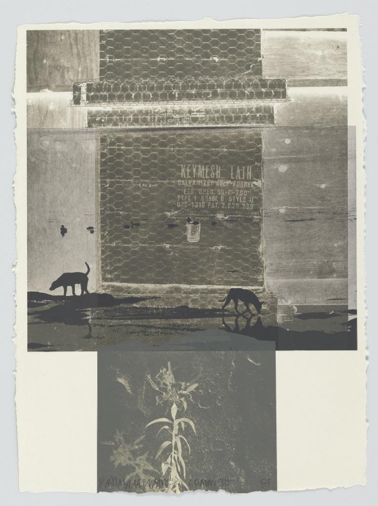 Роберт Раушенберг — картины и творчество американского художника 2