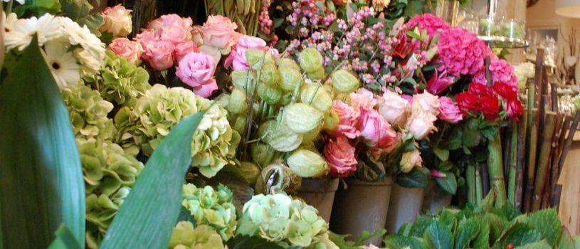 Как выбирать цветы зимой?